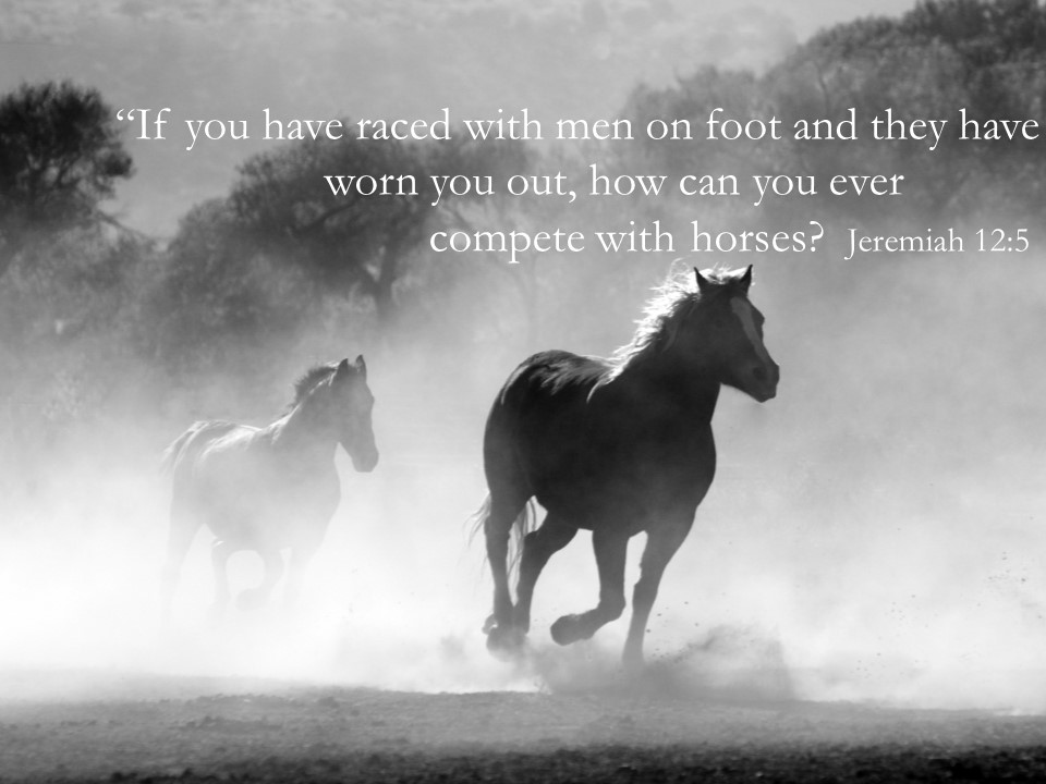 Jeremiah: Redeeming the Wild Within